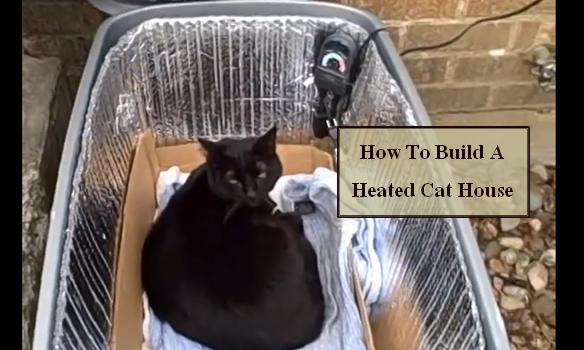 Diy Video Build A Cozy Little Home With Heater And Keep Your Outside Cat Warm All Winter Long