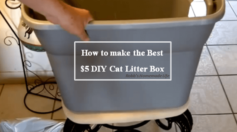 To Keep Litter From Spreading All Over The House You Should