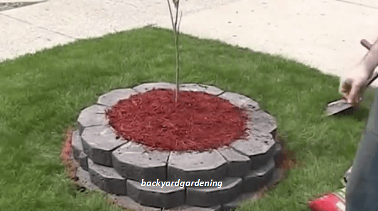 [Video] Building A Raised Island Garden Bed W/ Retaining Wall Bricks.    BRILLIANT DIY