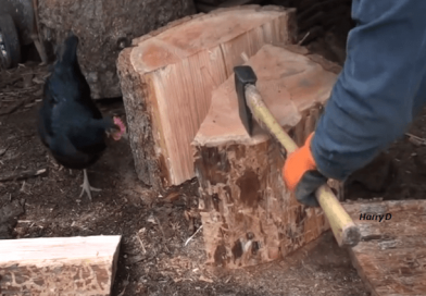 [Video] Let's Put On Our Gear For Splitting Firewood And Learn The Quickest, Safest, And Fastest Way To Divide Those Logs.