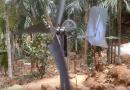 [Video] A Tutorial On Homemade Wind Turbines.