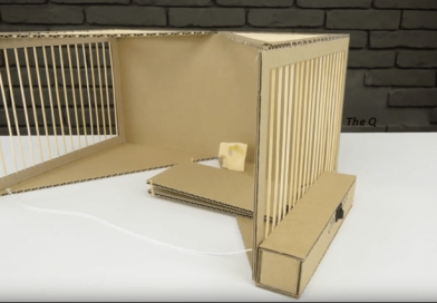 How To Make  A Rat Trap Quickly With Cardboard.