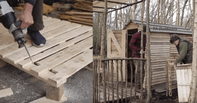 From Pallet Wood To An Off Grid Cabin.